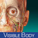 Human Anatomy Atlas- 3D Anatomical Model of the Human Body