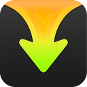 Download Expert - your ultimate download manager
