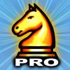 Schach Pro