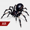 AR Spinnen