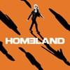 Homeland: Homeland, Season 7 (subtitled)