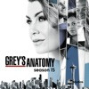 Grey's Anatomy: Grey's Anatomy, Season 15 (subtitled)