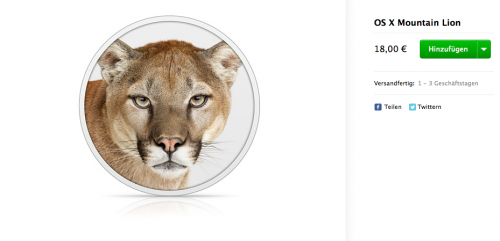 Mountain Lion Apple Store