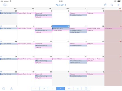 miCal iPad Foto 2