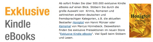 Exklusiver Kindle Store Logo