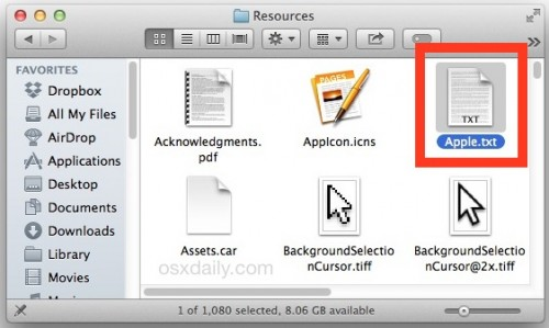 Steve Jobs Vortrag Pages1