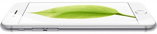iPhone 6 flach