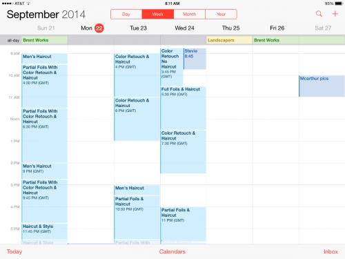 iOS 8 Kalender Bug
