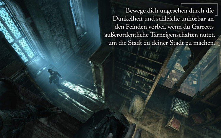 Thief Shadow Edition Screen