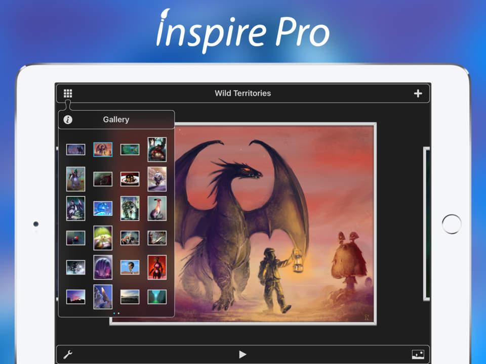 Inspire Pro Screen