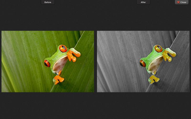 Color Strokes Screen