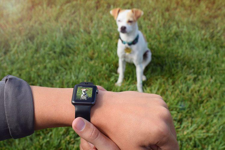 apple-watch-kamera-armband