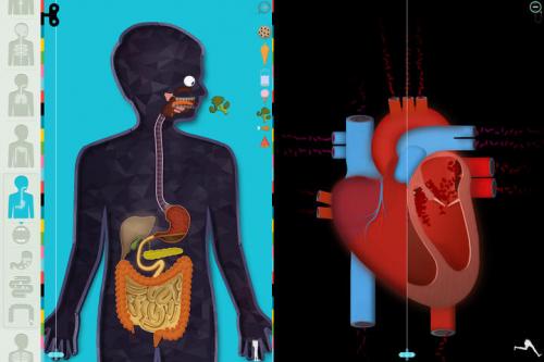 Der Menschliche Körper Screen1