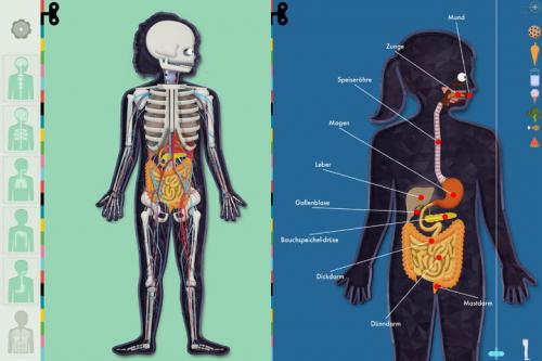 Der Menschliche Körper Screen2
