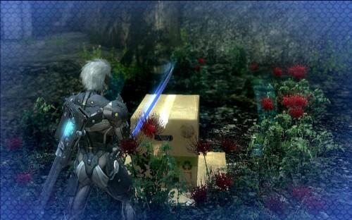 Metal Gear Rising - Revengeance Screen2